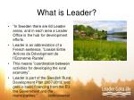What is Leader?