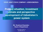 Present situation, investment climate and perspective development of Uzbekistan's  power system