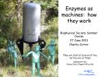 Enzymes as machines:  how they work