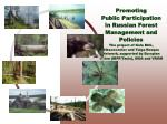 Promoting  Public Participation  in Russian Forest Management and Policies
