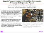 Magnetic Tweezer System for Single-DNA Experiments: A Summer Undergraduate Project