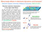 Many body effects in electronic dynamics and transport