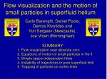 Flow visualization and the motion of small particles in superfluid helium