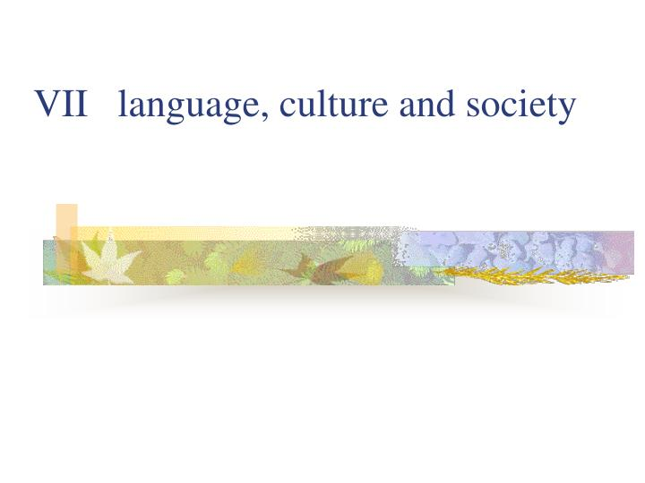 vii language culture and society n.