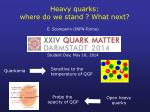 Heavy quarks: where do we stand ? What next?