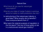 Natural Gas What future do you see for natural gas consumption?