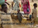 The IASC WASH Cluster Water, Sanitation and Hygiene