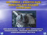 SEA TURTLE / BYCATCH SAFE HANDLING AND RELEASE GUIDELINES