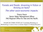 Forests and floods: drowning in fiction or thriving on facts? The other socio-economic impacts.