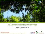 4.2. Carbon accounting: Quick Steps