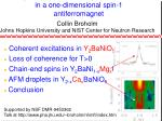 Impurities and finite temperature effects in a one-dimensional spin-1 antiferromagnet