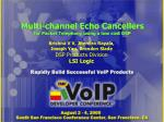 Multi-channel Echo Cancellers for Packet Telephony using a low cost DSP