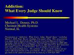 Addiction: What Every Judge Should Know