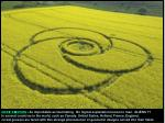 CROP CIRCLES :  As improbable as fascinating.  No logical explanation known to man.  ALIENS ??