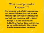 What is an Open-ended Response???