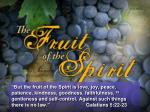 The Root of Fruit