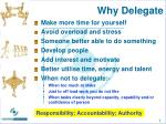Why Delegate