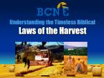Understanding the Timeless Biblical Laws of the Harvest
