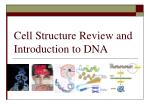 Cell Structure Review and Introduction to DNA