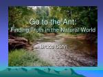Go to the Ant: Finding Truth in the Natural World