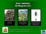 DON'T DESTROY  the Things You Love
