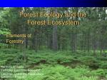 Forest Ecology and the Forest Ecosystem