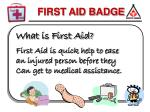 What is First Aid? First Aid is quick help to ease an injured person before they