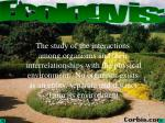 Ecology is: