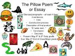 The Pillow Poem or Essay