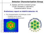 Detector Characterisation Group